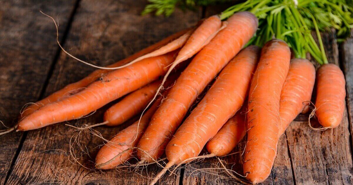 How much Sugar does Carrot have