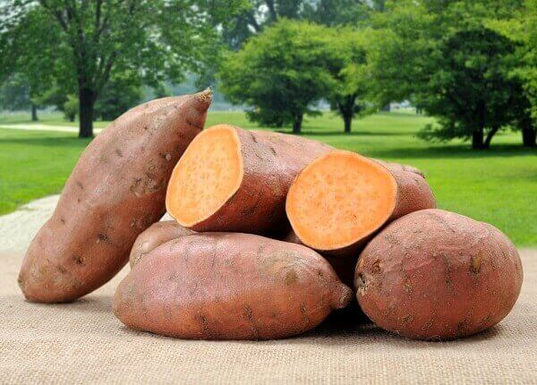 The nutritional value of sweet potato