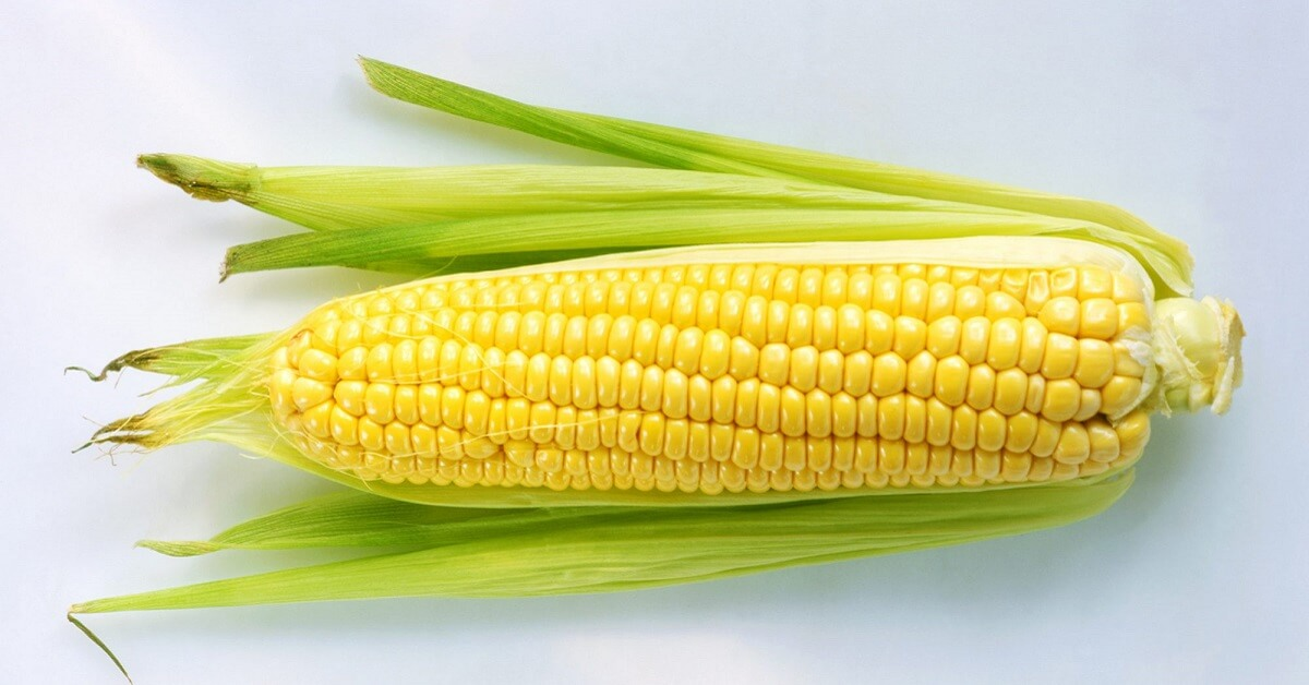 How long does corn last in the fridge – What are some ways to reheat corn