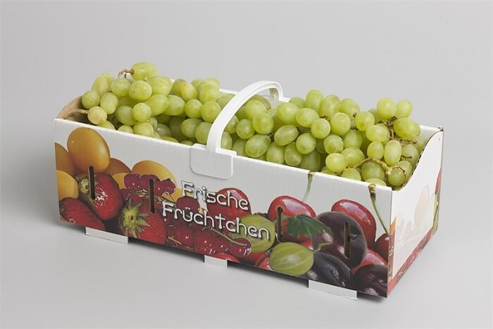 How to keep grapes safely to make them last longer