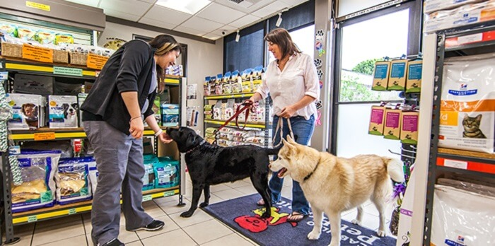 6 Places that Provide Free Dog Food to Low-income Families