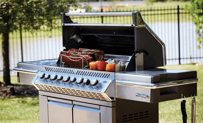 Decide and Look for the Best Grill