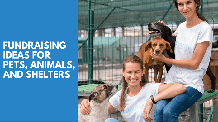 Nonprofit Organizations for Pets or Dogs