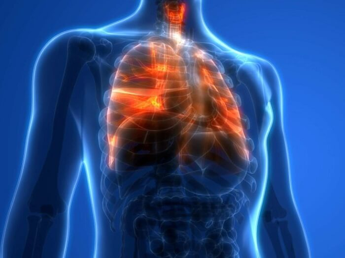physical and internal body health
