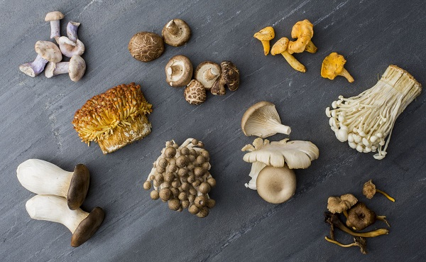 Mushrooms - Wild or Cultivated